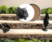 Bison Coaster Set - Home Decor - Gift for Animal Lover or Outdoorsman - Cork-Bottom Coaster Set of 4 - American Bison - Buffalo