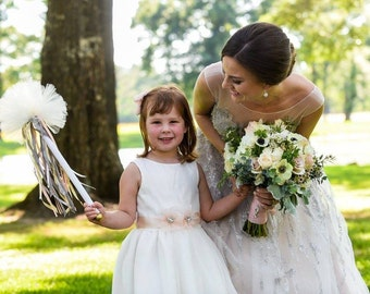 Blush Pink Organza Bridal Sash, Blush Bridal Sash, Blush Organza Wedding Belt, Blush Flower Girls Sash