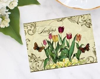Antique Tulip Garden Note Cards