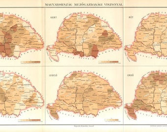 1896 Original Antique Map of Agriculture in Hungary