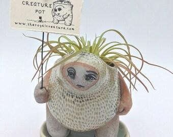 Textured Creature Pot