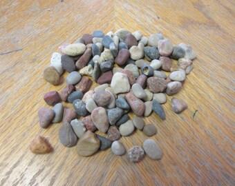 100 Small Pebbles Beach Stones Lake Michigan Mosaic Stone Craft Supplies