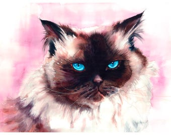 "5x7"" Himalayan Cat Watercolor Art Fine Art Print Watercolor Himalayan Cat Print Himalayan Cat Painting Himalayan Cat Art Watercolor Cat"