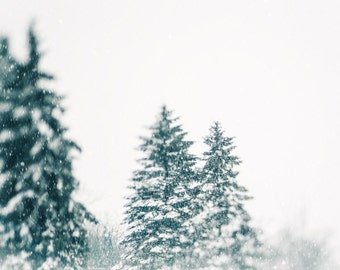 Large Photographic Print, Wall Art, Winter Photograph, Teal, White, Cool Colors, Landscape