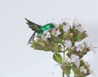 Dollhouse Miniature Green - White Hummingbird ~ Realistic Birds ~ Pets ~ Animals ~ OOAK Miniatures by Katie Doka