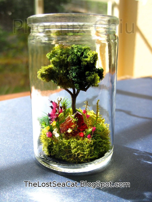 tree terrarium tree of life glass terrarium fern moss. Black Bedroom Furniture Sets. Home Design Ideas