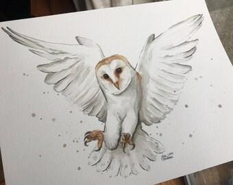 Barn Owl Watercolor Painting Owl ORIGINAL Watercolor Painting Owl Illustration Portrait Wildlife Animals Bird of Prey Painting 9x12
