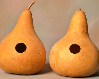 Six (6) Gourd Birdhouses, natural undecorated gourds, martin house gourd birdhouses, kettle gourd birdhouse