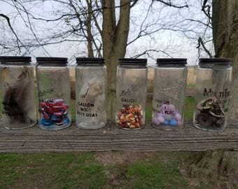 Set of 6 Vintage MutiTint paint jars