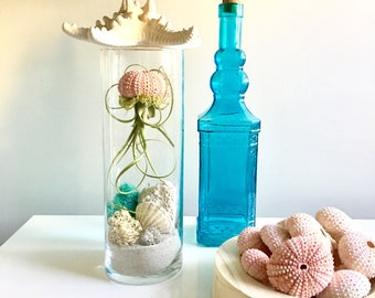 Under the sea terrarium- large glass vase Living decor DIY kit - gift for any occasion-  beach decor Mother's Day gift