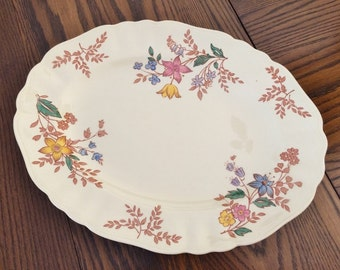 ANTIQUE MEAKIN IRONSTONE Platter - Cotswold Pattern - by J & G Meakin - Hand Colored - Oval