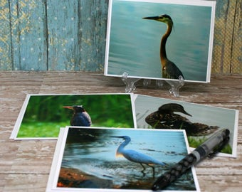 Blank Note Cards Featuring Original Photographs of SC Coastal Water Birds on 4x6 White Card Stock Set of 4