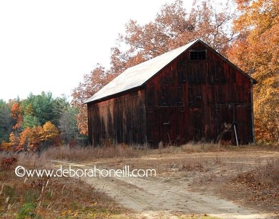"Barn Photography - tobacco farm dirt road rustic old colorful foliage fall New England ""Barn Road"""