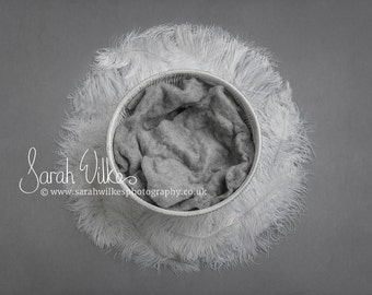 Newborn Digital Backdrop - White Feather Swirl
