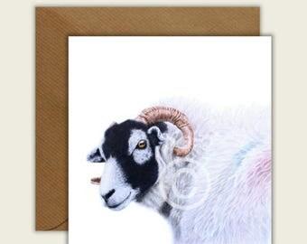 Swaledale Sheep Tup Animal Artist Blank Card