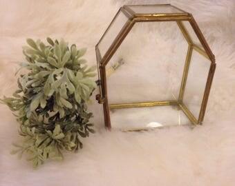 Geometric Brass Glass display box