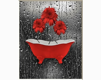 Red Gray Daisy Flowers Bathtub Raindrops Photography Artwork Bathroom Red Decor Matted Picture