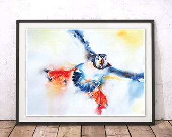 Puffin Print, Puffin Wall Art, Bird Print, Albratros Print, Sea Bird Watercolour, Bird Painting, Puffin Painting by Liz Chaderton