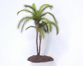 """7"""" Double Trunk Pygmy Palm Cluster for Mini Landscaping"""