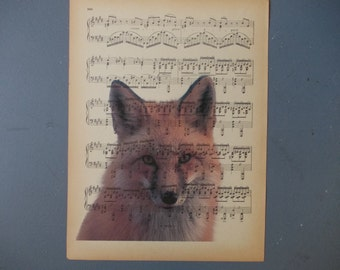 Fox Print on Vintage paper / Music Sheet print / Red FOX Photography