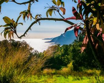 "Hawaii Art, Maui Photography, Road to Hana, Hawaiian Print, Hawaii Landscape, Maui Print, Hawaii Wall Decor, Mountain Print - ""Road to Hana"""