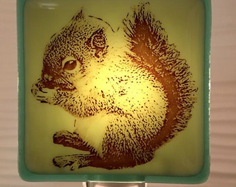 Squirrel Baby Night Light Fused Glass