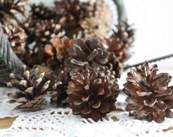 70 small pine cones , lot of pine cones, wedding decoration , cottage chic , home decoration DYE craft supplies