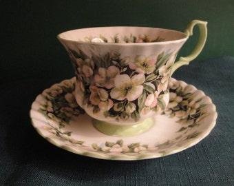 "Royal Albert Bone China England Cup And Saucer Set, "" Orange Blossom"" Pattern, Fragance Series"