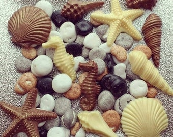 Beach theme. Chocolate sea shells and pebbles table display. Wedding centerpiece.