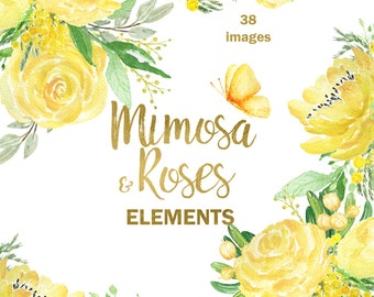 Mimosa & roses watercolor clip art,hand drawn. Elements. Roses, peony,  spring garden wedding, yellow flowers invitations