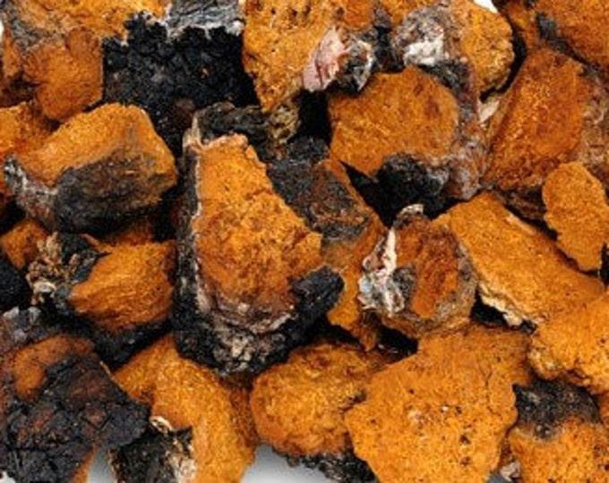 Chaga Mushrooms - Certified Organic