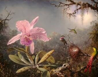 Martin Johnson Heade: Cattleya Orchid and Three Hummingbirds. Fine Art Print/Poster. (004180)