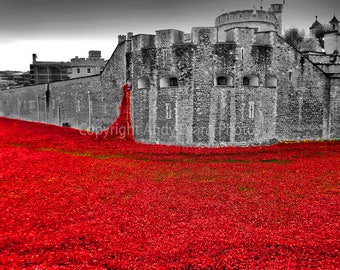 Poppies at The Tower of London Blood Swept Lands and Sea of Red England landscape photograph b/w photo fine art photographic picture print