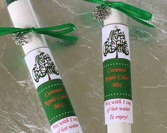 Caramel Apple Cider Mix, Test Tube Wedding Favors, Stocking Stuffer, Teacher Gift, Christmas Gift, Apple Cider Favors, Apple Favor