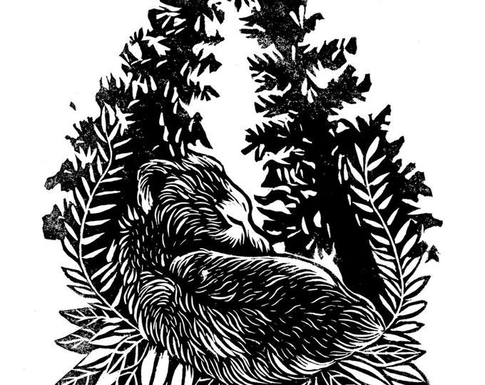 Bear Cub Sleeping - Linocut Print Original Illustration A4 Forest Trees Bears