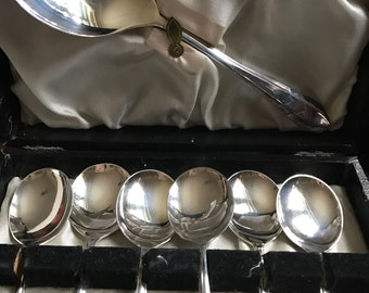 A vintage set of dessert spoons and serving spoon