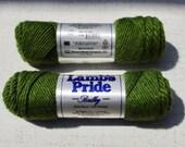 Kiwi Lamb's Pride BULKY Yarn, Green, Destash