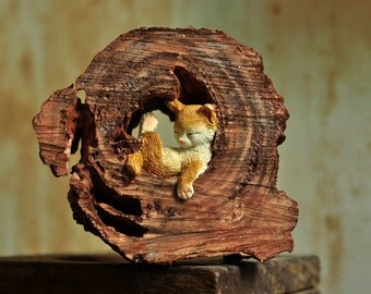 Kitten Napping In A Tree Trunk