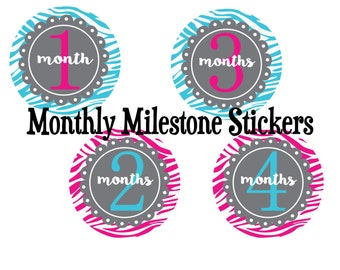 Monthly Baby Girl Stickers - Milestone Stickers - Month Stickers - Baby Month Stickers - Baby Stickers - Zebra Print - FREE SHIPPING