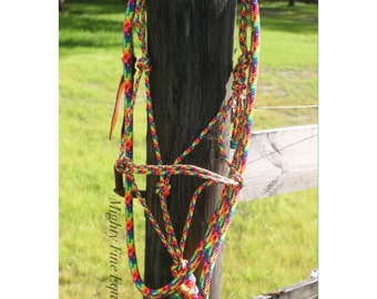 SALE! Neon Rainbow Halter & Lead Set