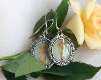 Earrings with Real Dried-Flower and Sterling Silver Hook (Free Shipping)