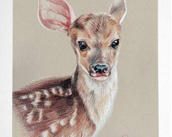 Baby Deer - Original Pastel Drawing on Paper - Bambi Drawing - Animal Portrait