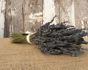"""Lavender Bunch - 1 Dried Lavender Bundle - over 14"""" long, 250+ stems, certified organic, dried lavender for bouquets, crafts, and weddings"""