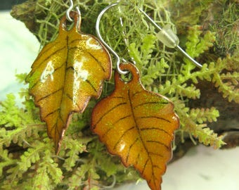 Earrings leaves, poplar, Cottonwood, enamels Diane Charuest, copper enameling, autumn leaf, earings