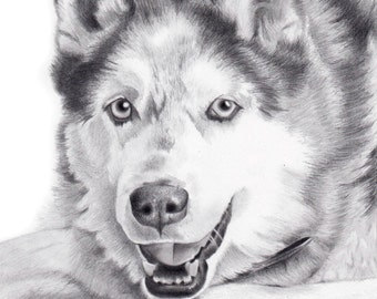 CUSTOM PET PORTRAIT from your favorite photo, Original Art, Dog Portrait, Custom Pet drawing,Siberian Husky, Gift for her. Original Fine Art