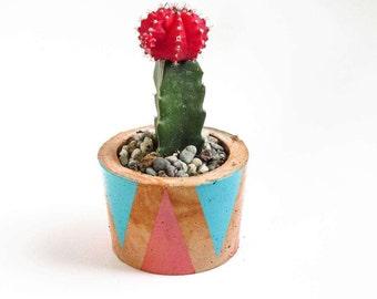 Cactus planter - Western planter - Concrete planter - Succulent planter - Indoor planter - Home decor - Western decor - Southwestern decor