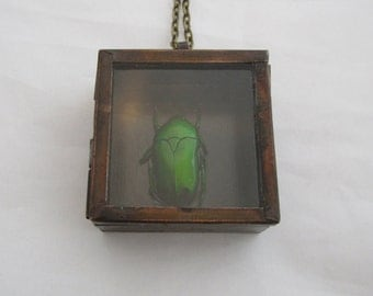 Green Beetle Shadowbox Pendant Necklace