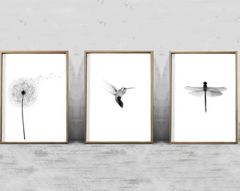 Set of 3 Prints Botanical Illustration Dandelion Hummingbird Dragonfly Minimalist Posters Printable Scandinavian Modern Art Nordic Nature