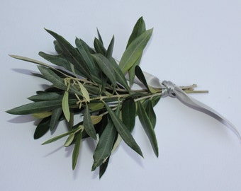 Olive branch peace offering/mini bouquet