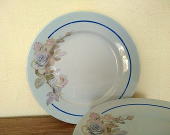 8 french antique dinner plates Digoin Sarreguemines 1910s